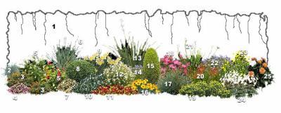 am nagement d 39 un talus bienvenu au monde des fleurs et des legumes de. Black Bedroom Furniture Sets. Home Design Ideas